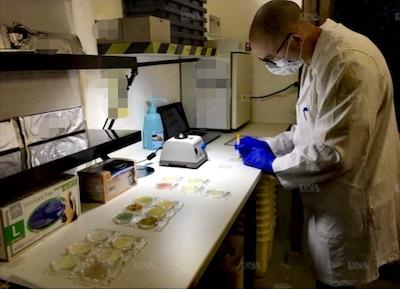Nettoyage après décès - Analyse bactériologique par le Groupe NAD